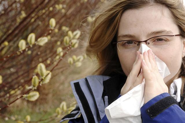 Wenn mit Beginn des Frühlings die ersten Pollen fliegen, dann beginnt für Heuschnupfengeplagte oftmals eine monatelange Leidenszeit. - Foto: djd/MykoTroph/Bernd Leitner