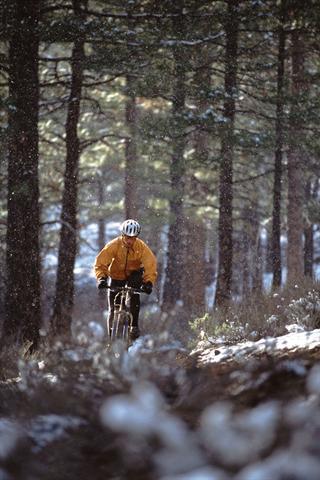 Sicher unterwegs: Mountainbiker müssen ihre Strecken mit allen Kurven und Bodenunebenheiten sofort erfassen können, gutes Sehen ist deshalb unverzichtbar. - Foto: djd/Ergo Direkt Versicherungen