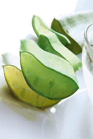 In den Blättern der Aloe Vera stecken wichtige Inhaltsstoffe. - Foto: djd/www.lrworld.com