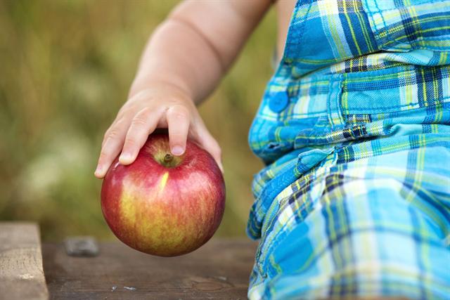 Äpfel sind nicht nur lecker und vitaminreich, sie enthalten auch Pektin, das die Darmflora bei Durchfall unterstützen kann. - Foto: djd/Dr. Loges/pojoslaw/iStock/Thinkstock